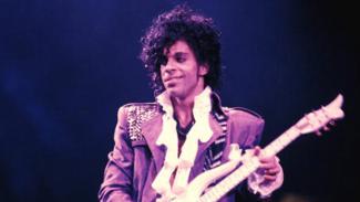 Purple Rain Dried Out…