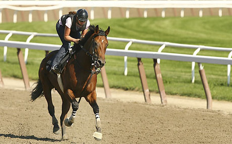 Belmont Stakes Preview Day 1